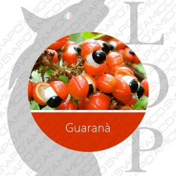 AROMI LOP 10 ML GUARANA